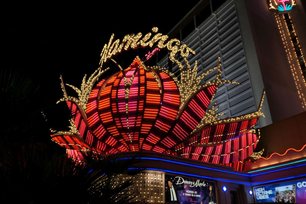 The great Neon Flamingo Hotel and Casino in Las Vegas